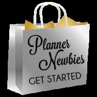 bag silver newbie e1473041977672